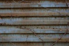 Rdzewiejący metalu drzwi tło metal tekstura stara rdzewiejąca stara metal powierzchnia Obrazy Stock