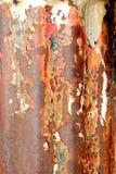 rdzewiejąca makro- stara drymba Zdjęcia Royalty Free