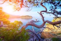 śródziemnomorski Zdjęcia Stock