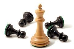 Re bianco Won Immagine Stock