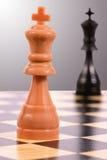 Re chiaro contro il re scuro Immagini Stock