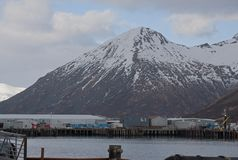Re Cove Alaska Fotografia Stock