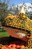 Re della rana della zucca Fotografie Stock
