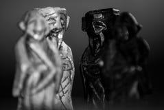 Re e pezzi degli scacchi delle regine Fotografie Stock Libere da Diritti