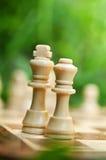 Re e regina di scacchi Immagine Stock