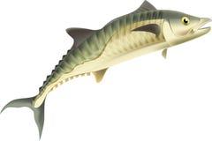 Re Fish illustrazione vettoriale