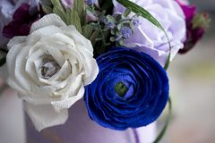 Paper flowers are perfect for bringing spring inside any time of the year. They`re fun to create, look beautiful once complete and, better still, they last royalty free stock images