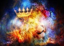 Re leone nello spazio cosmico Leone su fondo cosmico fotografia stock