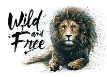 Re leone, pittura dell'acquerello, predatore degli animali, pittura della fauna selvatica Immagine Stock