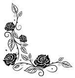 Róże, liście, kwiaty Zdjęcia Stock
