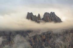 Re Of The Mountains fotografia stock