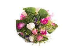 Róże odizolowywać na białym tle Obrazy Royalty Free