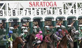 And They're Off!. Horses break from the gate at beautiful Saratoga Race Course in Saratoga Springs, New York stock photography