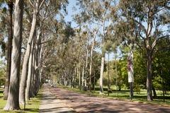 Re Park - Perth - Australia fotografia stock libera da diritti