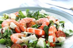 Re Prawn Salad Fotografia Stock