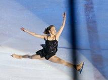 Re sull'esposizione di ghiaccio Bucarest 2012 Fotografia Stock Libera da Diritti