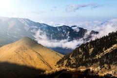Área del bosque de Hehuanshan. Taiwán Foto de archivo