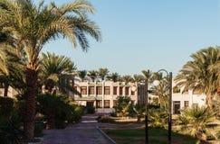 Área del edificio y las palmeras del ` s del hotel en Hurghada Egipto Foto de archivo