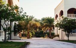 Área del edificio y las palmeras del ` s del hotel en Hurghada Egipto Imagen de archivo