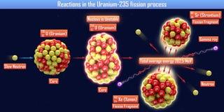 Reacciones en el proceso de la fisión Uranium-235 Fotografía de archivo libre de regalías