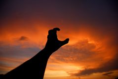Reach. Human hand trying to reach the sky at sunset royalty free stock photography