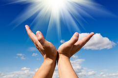 Reach for the sun stock photography