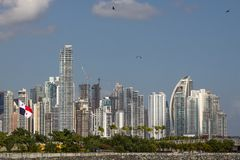 Reaching ever higher - Panama`s highrise buildings and seagulls. From Panama`s old town - Casco Vieja - highrises of the modern city can be seen. New buildings royalty free stock photo