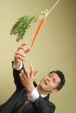 Reaching goals. Businessman in a suit reaching for a carrot on a stick stock image
