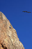 Reaching for the Sky. Point Dume Beach, California, USA. A rock climber is within reach of the summit as the pelicans soar through the Autumn sky Stock Photos