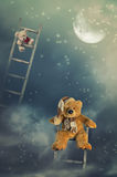Reaching For The Stars. Teddy bears on rustic wooden ladders in the sky reaching for the stars royalty free stock photo