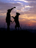 Reaching for the Sunset. A dog jumps as her master asks her to jump in the backdrop of colorful sky after sunset Stock Photography