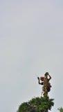 Reaching the top, professional lumberjacker at work Royalty Free Stock Photos