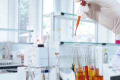Reactants liquid mixed by scientist Stock Image