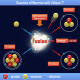Reaction of Neutron with Lithium-7. The reaction of Neutron with Lithium-7 Royalty Free Stock Photography