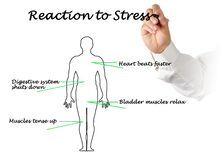 Free Reaction Of People To Stress Royalty Free Stock Image - 179366806