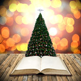 Read bible in christmas day Royalty Free Stock Image