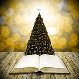 Read bible in christmas day Stock Photography