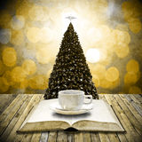 Read bible and drink coffee in christmas day Royalty Free Stock Image