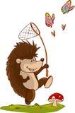 Read books hedgehog Stock Photos