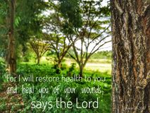 I will restore you to health and heal your wounds with nature background and design for Christianity. Read inspirational Bible verses and quotes that will royalty free stock image