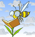 Reader Bee Stock Photos