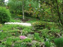 Reader rock garden landscape. Picturesque gardens, flowers and trees in the spring. Calgary Alberta Canada Stock Image