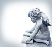 Reading angel. With a book Royalty Free Stock Image