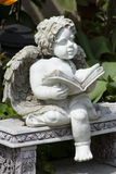 Reading angel Royalty Free Stock Photography