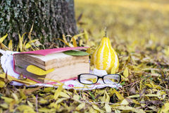Reading in the autumn park. Book with reading glasses ans yellow pumpkin in the autumn park royalty free stock images