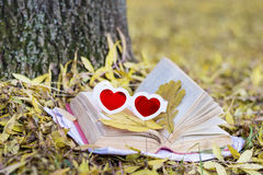 Reading in the autumn park. Book with reading glasses ans yellow pumpkin in the autumn park stock photos