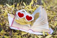 Reading in the autumn park. Book with reading glasses ans yellow pumpkin in the autumn park royalty free stock photo