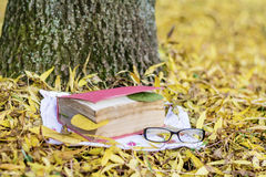 Reading in the autumn park. Book with reading glasses ans yellow pumpkin in the autumn park royalty free stock photos