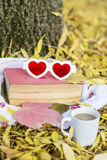 Reading in the autumn park. Book with reading glasses ans yellow pumpkin in the autumn park stock image