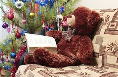 Reading bear, Christmas tree Royalty Free Stock Photography
